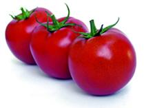 Oh les belles tomates !