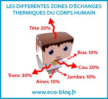 Les différentes zones d'échange thermique du corps humain