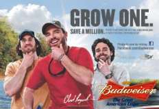 budweiser-grow-one
