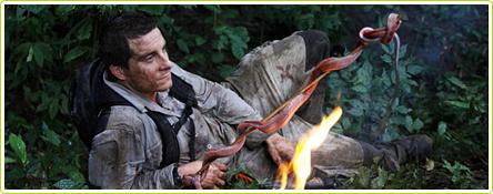 Ah, une bonne brochette de serpent !