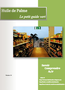huile-de-palme-petit-guide-vert