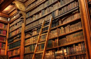 Avez-vous vraiment besoin du livre abandonné tout en haut à gauche sur la dernière étagère de votre bibliothèque?