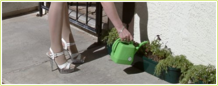 jardinier