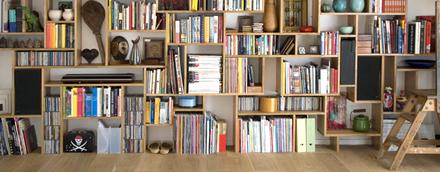 Decoration bibliotheque salon