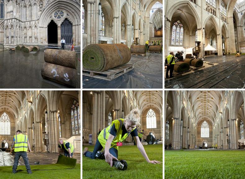 Du gazon dans la cathédrale de York Minster en Angleterre