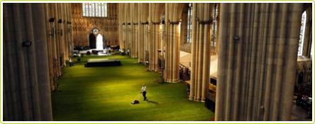 Un beau gazon à l'anglaise dans la cathédrale de York Minster