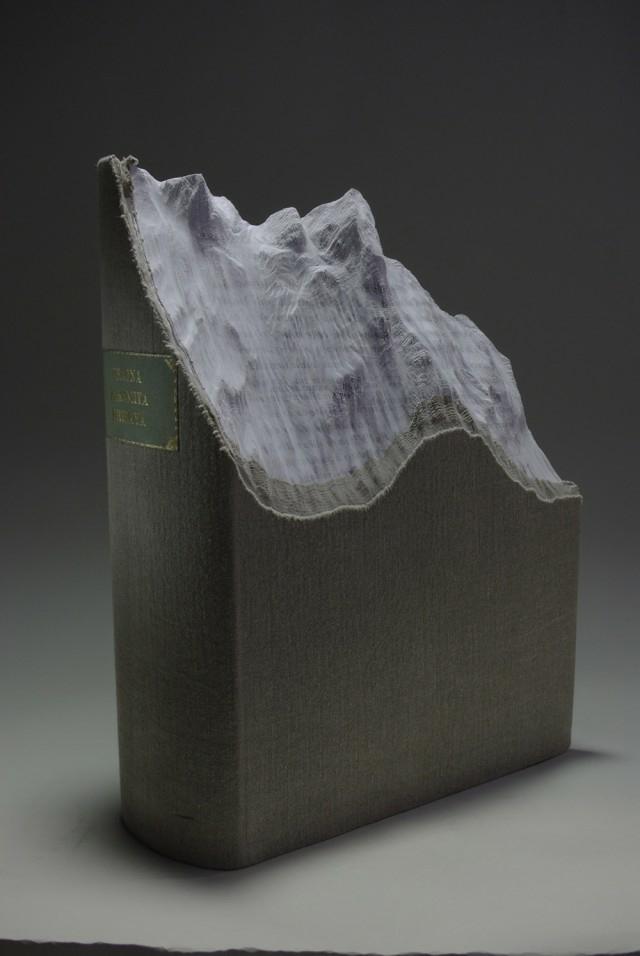 livre-sculpte-paysage-guy-laramee-05