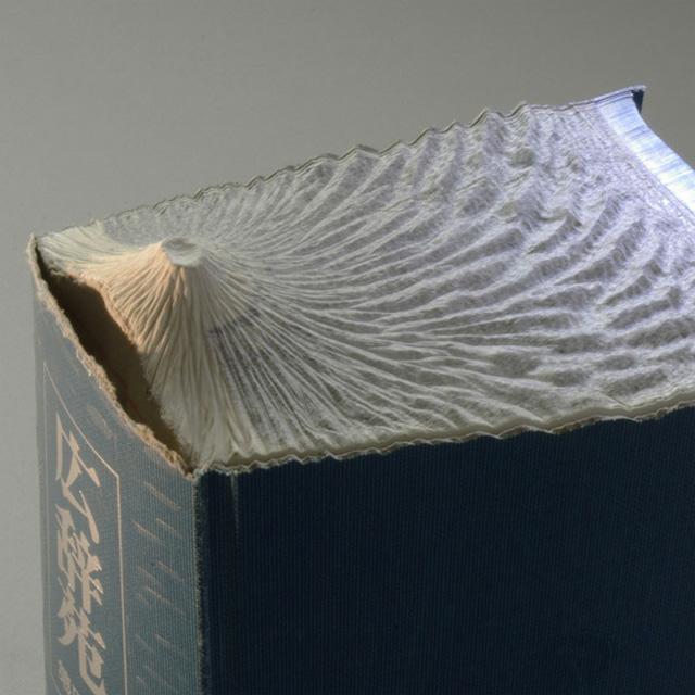 livre-sculpte-paysage-guy-laramee-07