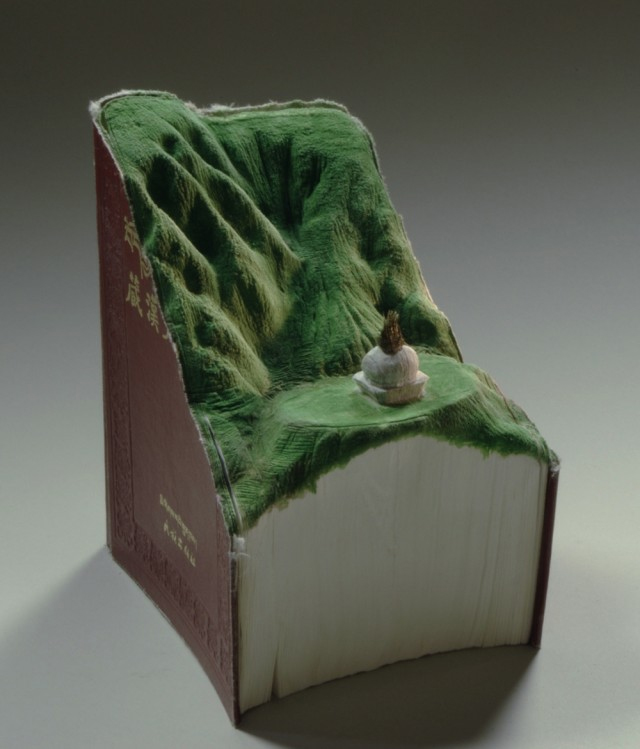 livre-sculpte-paysage-guy-laramee-08