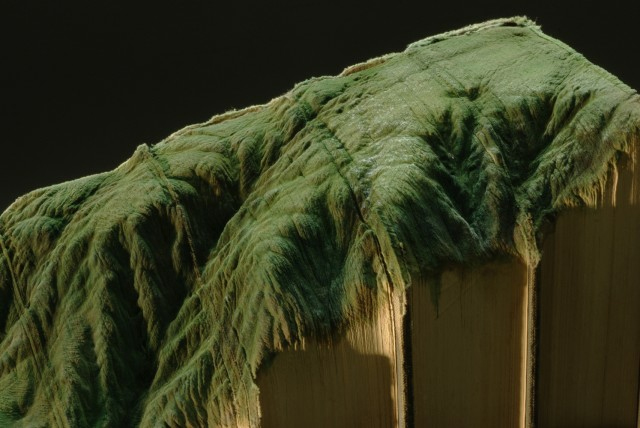 livre-sculpte-paysage-guy-laramee-11
