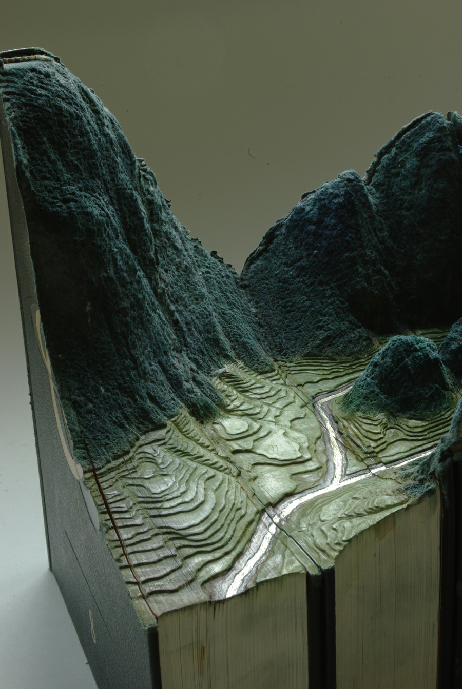 livre-sculpte-paysage-guy-laramee-13