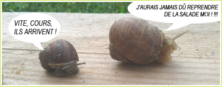 23-blague-escargots