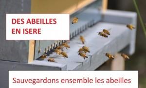 des abeilles en Isère