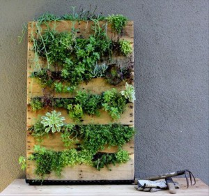 Une autre idée de jardinière en palettes.