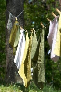 fresh laundry:chiot's run