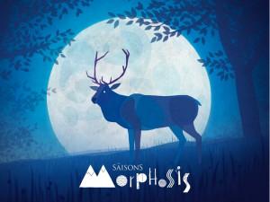 Les saisons morphosis