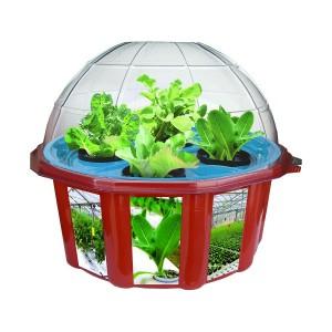 potager-pedagogique-pour-enfants-hydroponique-salades