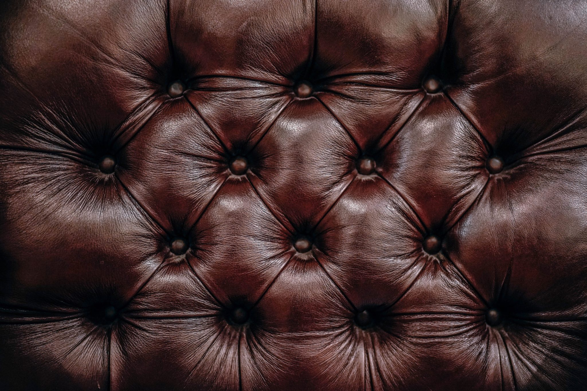 Le cuir végétal : vrai ou faux ? – L'éco blog